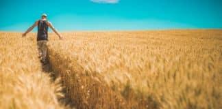 θητεία, αγρότης