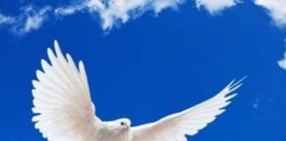Αγίου Πνεύματος 2019: Πότε πέφτει - Ποιοι έχουν αργία