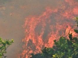 Φωτιά στα Μέγαρα Φωτιά στο Ζούμπερι και τον Άγιο Ανδρέα - Τι έκανε ο αρχηγός ΓΕΣ