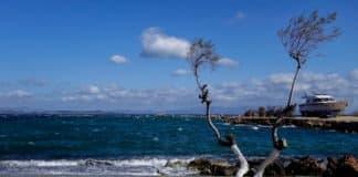 Καιρός Τσικνοπέμπτη 20 Φεβρουαρίου 2020 Πρόγνωση καιρού Meteo